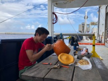 Yang Xiang of the University of California, Santa Cruz (UCSC) carving his jack-o-lantern for Halloween.